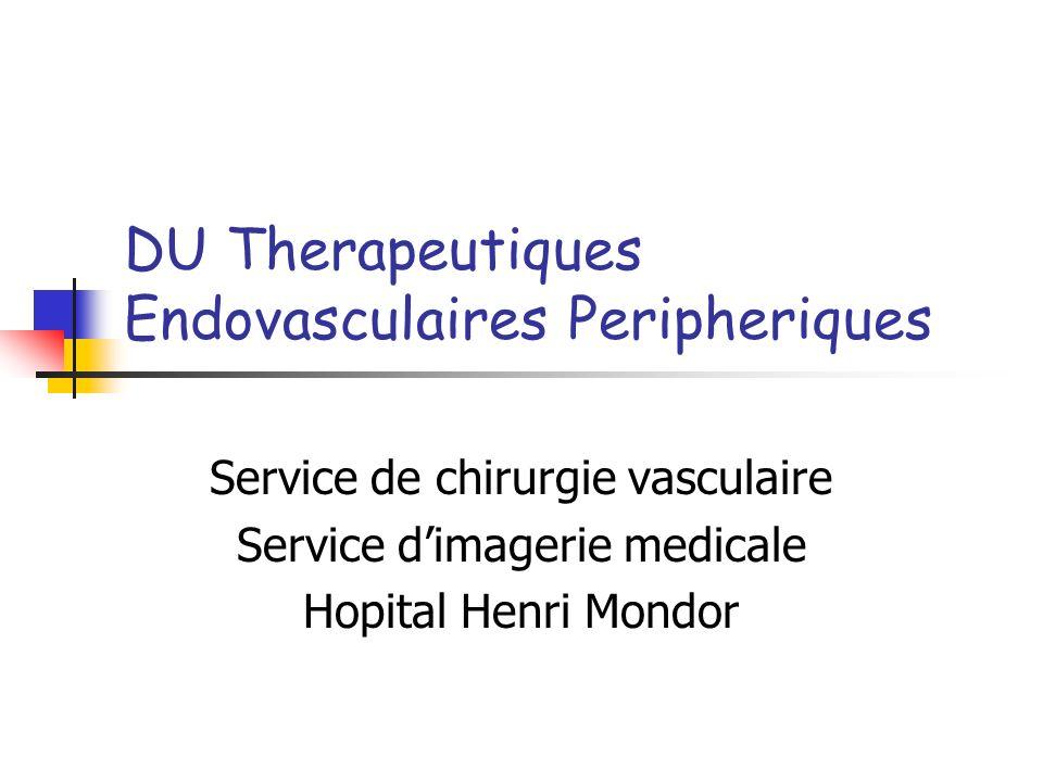 DU Therapeutiques Endovasculaires Peripheriques Service de chirurgie vasculaire Service dimagerie medicale Hopital Henri Mondor