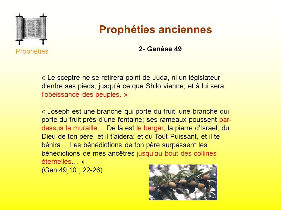 Prophéties anciennes 2- Genèse 49 « Le sceptre ne se retirera point de Juda, ni un législateur dentre ses pieds, jusquà ce que Shilo vienne; et à lui
