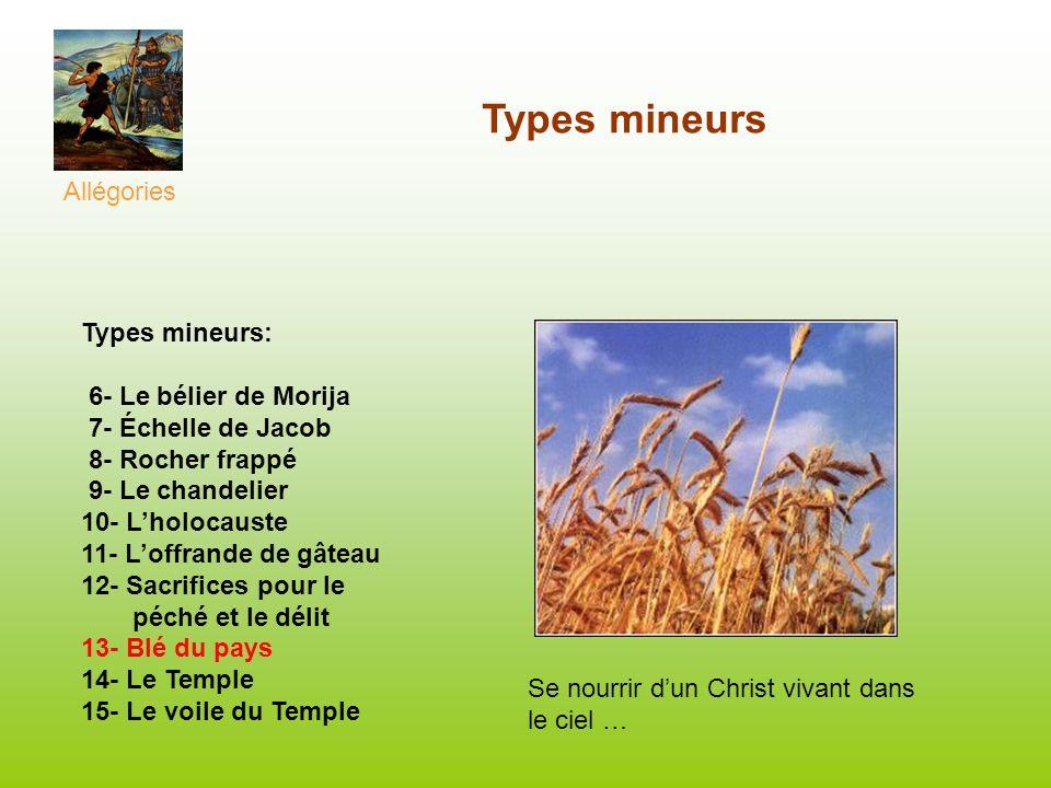Types mineurs Allégories Se nourrir dun Christ vivant dans le ciel … Types mineurs: 6- Le bélier de Morija 7- Échelle de Jacob 8- Rocher frappé 9- Le