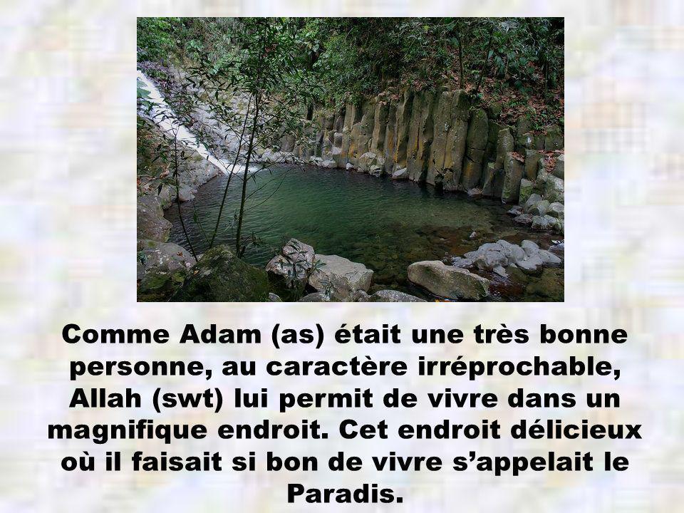 Comme Adam (as) était une très bonne personne, au caractère irréprochable, Allah (swt) lui permit de vivre dans un magnifique endroit.