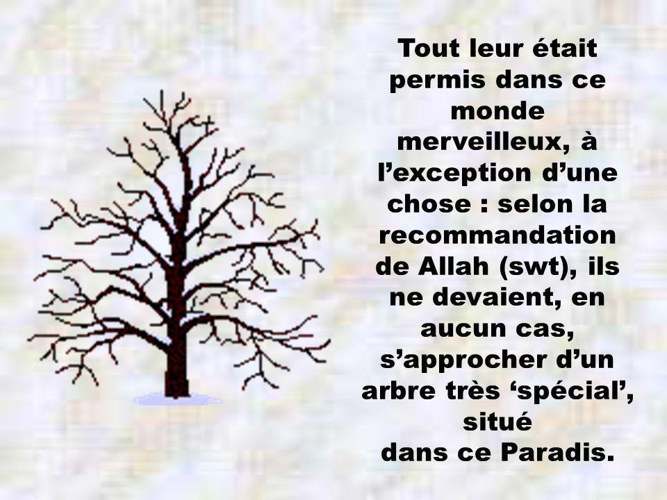 Tout leur était permis dans ce monde merveilleux, à lexception dune chose : selon la recommandation de Allah (swt), ils ne devaient, en aucun cas, sapprocher dun arbre très spécial, situé dans ce Paradis.