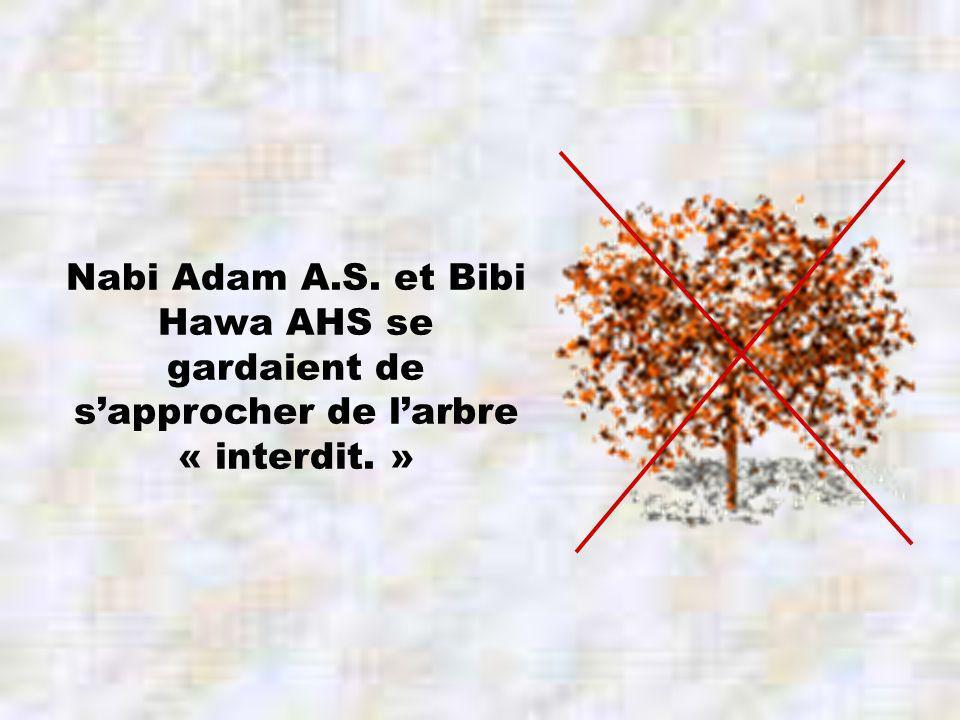 Nabi Adam A.S. et Bibi Hawa AHS se gardaient de sapprocher de larbre « interdit. »