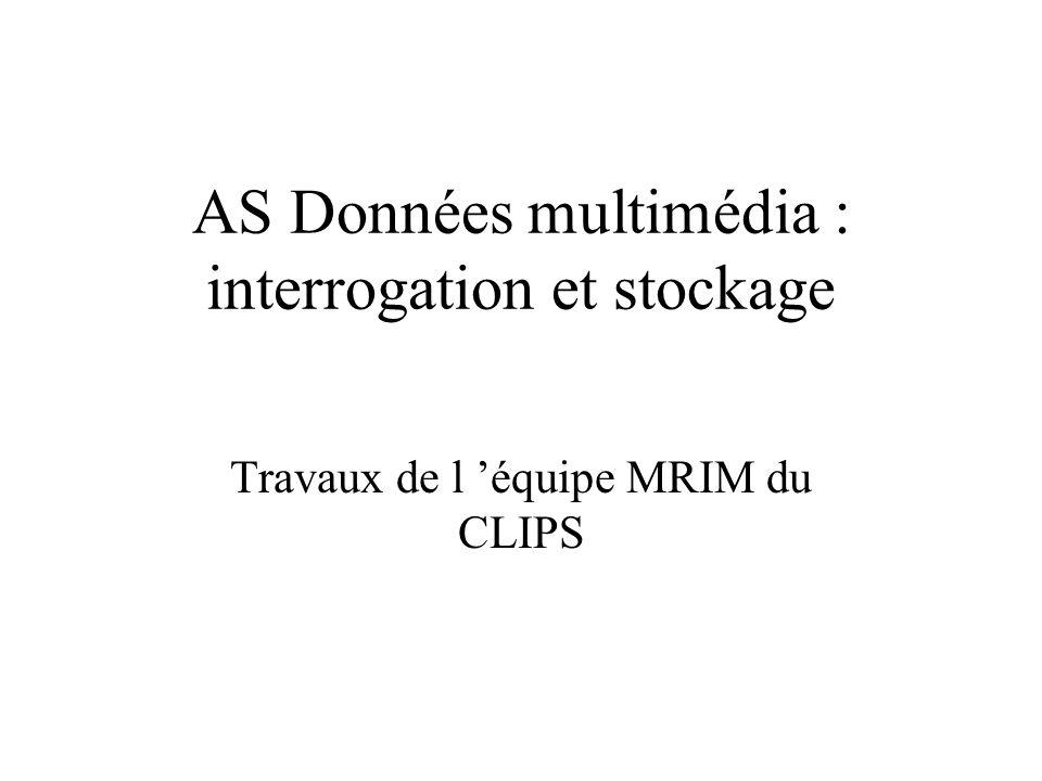 AS Données multimédia : interrogation et stockage Travaux de l équipe MRIM du CLIPS