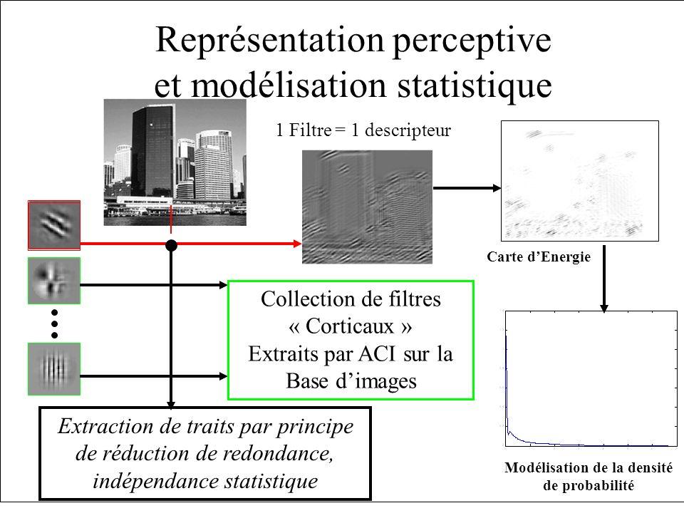 Représentation perceptive et modélisation statistique Carte dEnergie 1 Filtre = 1 descripteur Modélisation de la densité de probabilité Collection de