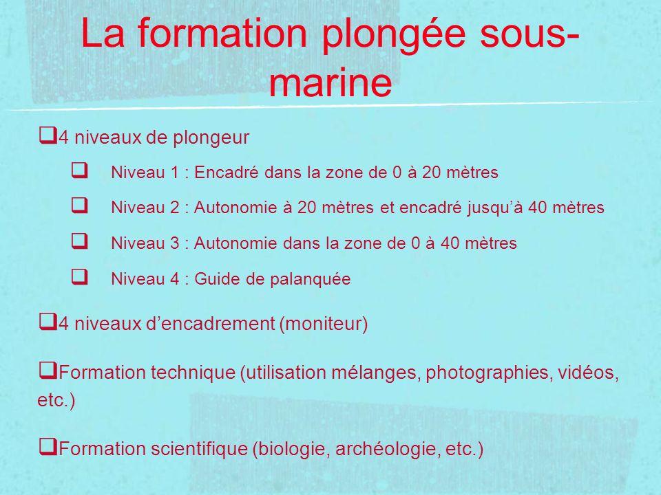 La formation plongée sous- marine 4 niveaux de plongeur Niveau 1 : Encadré dans la zone de 0 à 20 mètres Niveau 2 : Autonomie à 20 mètres et encadré j
