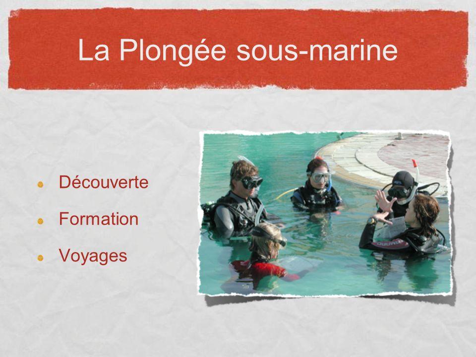 La Plongée sous-marine Découverte Formation Voyages