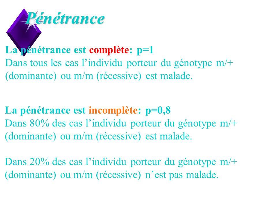 11Pénétrance La pénétrance est complète: p=1 Dans tous les cas lindividu porteur du génotype m/+ (dominante) ou m/m (récessive) est malade. La pénétra