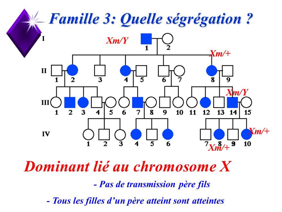 20 Famille 3: Quelle ségrégation ? Dominant lié au chromosome X Xm/Y Xm/+ - Pas de transmission père fils - Tous les filles dun père atteint sont atte