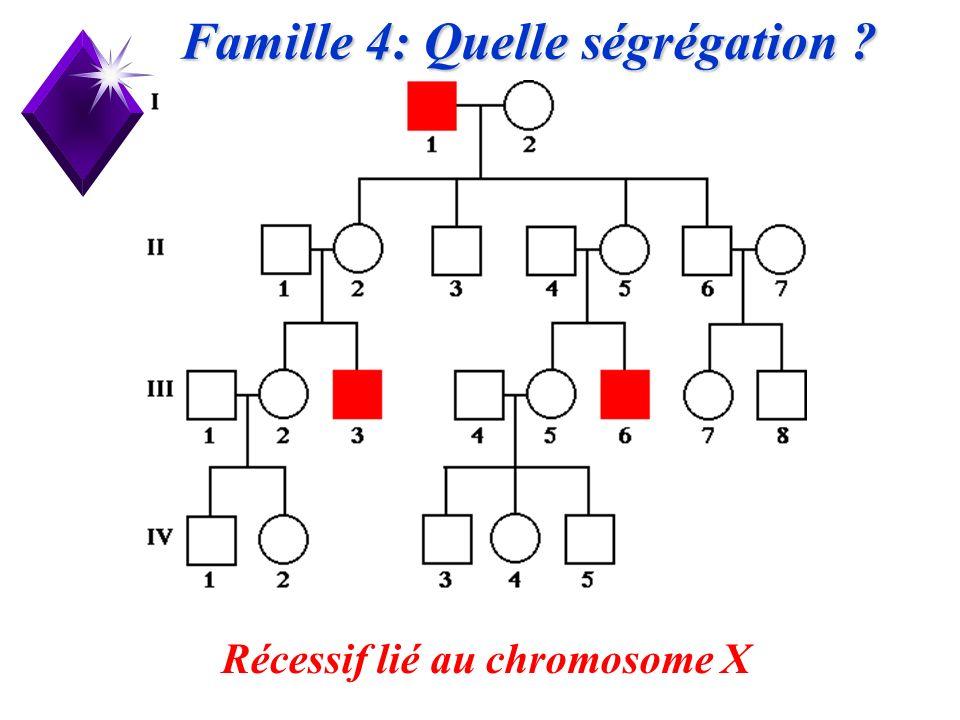 21 Famille 4: Quelle ségrégation ? Récessif lié au chromosome X