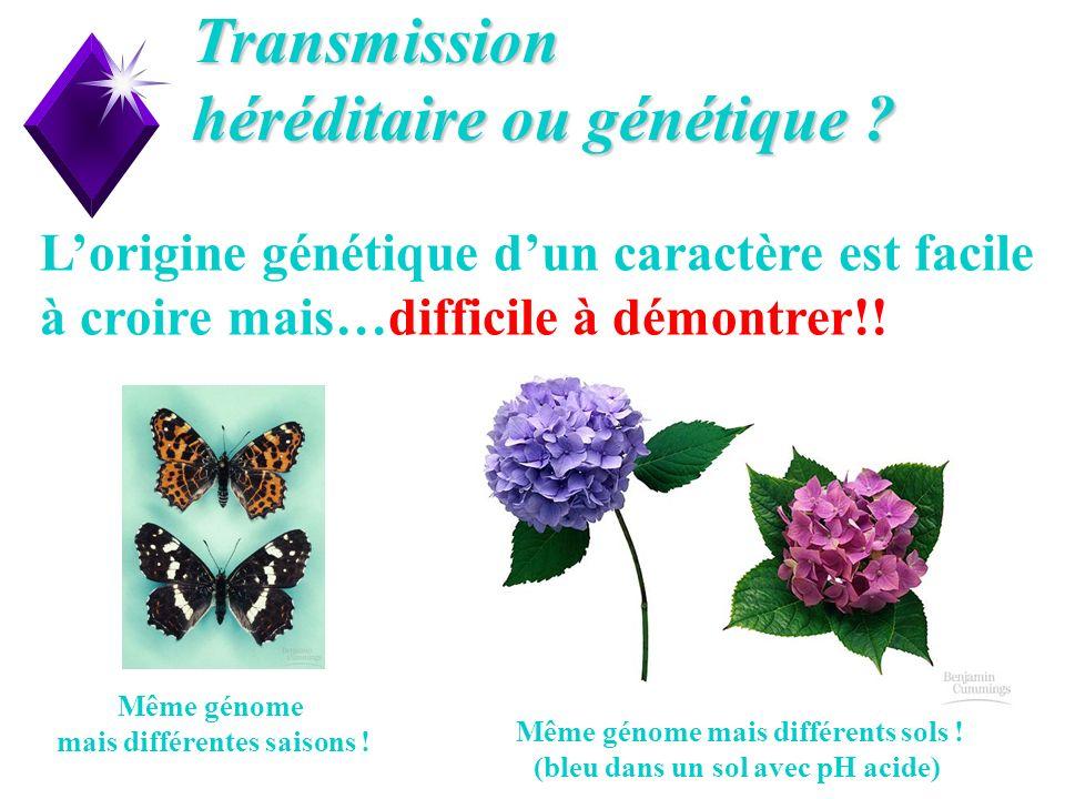 6 Transmission héréditaire ou génétique ? Lorigine génétique dun caractère est facile à croire mais…difficile à démontrer!! Même génome mais différent