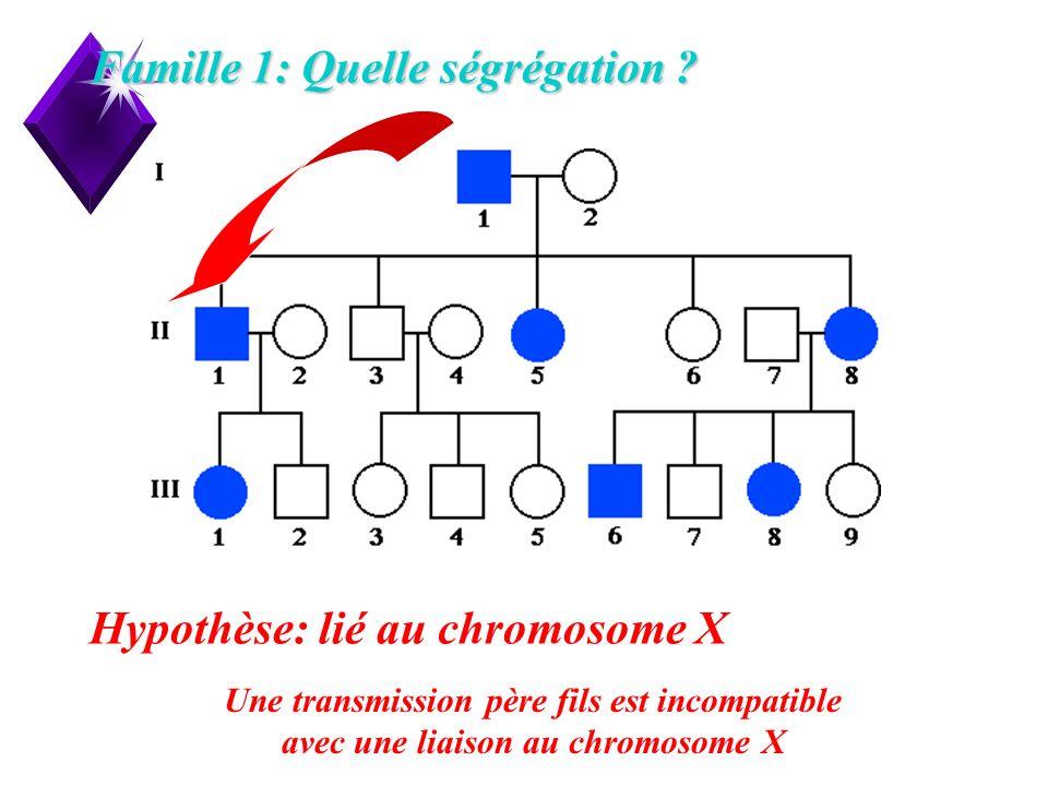 7 Famille 1: Quelle ségrégation ? Hypothèse: lié au chromosome X Une transmission père fils est incompatible avec une liaison au chromosome X