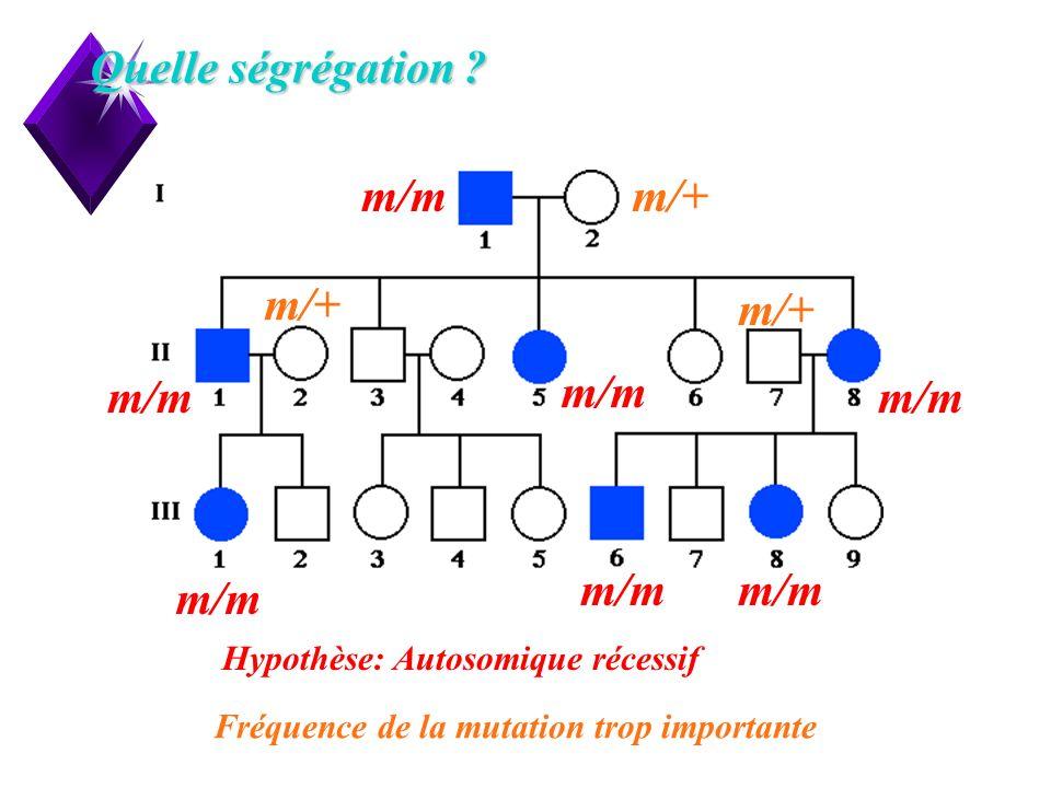 8 Quelle ségrégation ? Hypothèse: Autosomique récessif m/m m/+ Fréquence de la mutation trop importante
