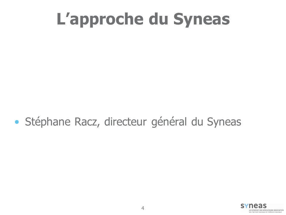 44 Lapproche du Syneas Stéphane Racz, directeur général du Syneas