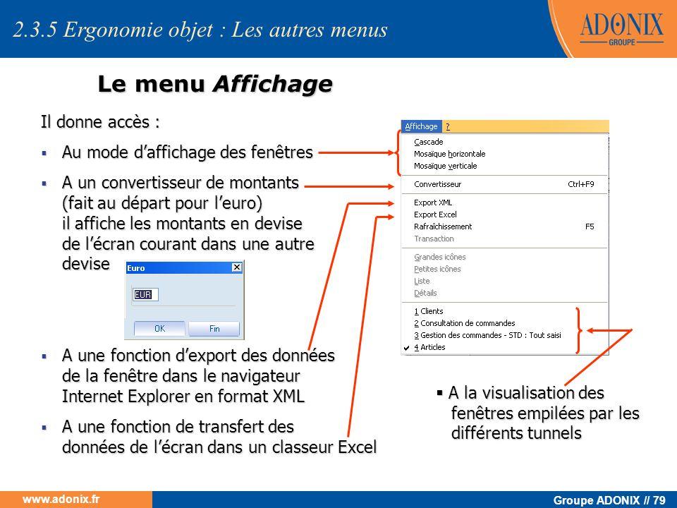 Groupe ADONIX // 79 www.adonix.fr Le menu Affichage Il donne accès : Au mode daffichage des fenêtres Au mode daffichage des fenêtres A un convertisseu