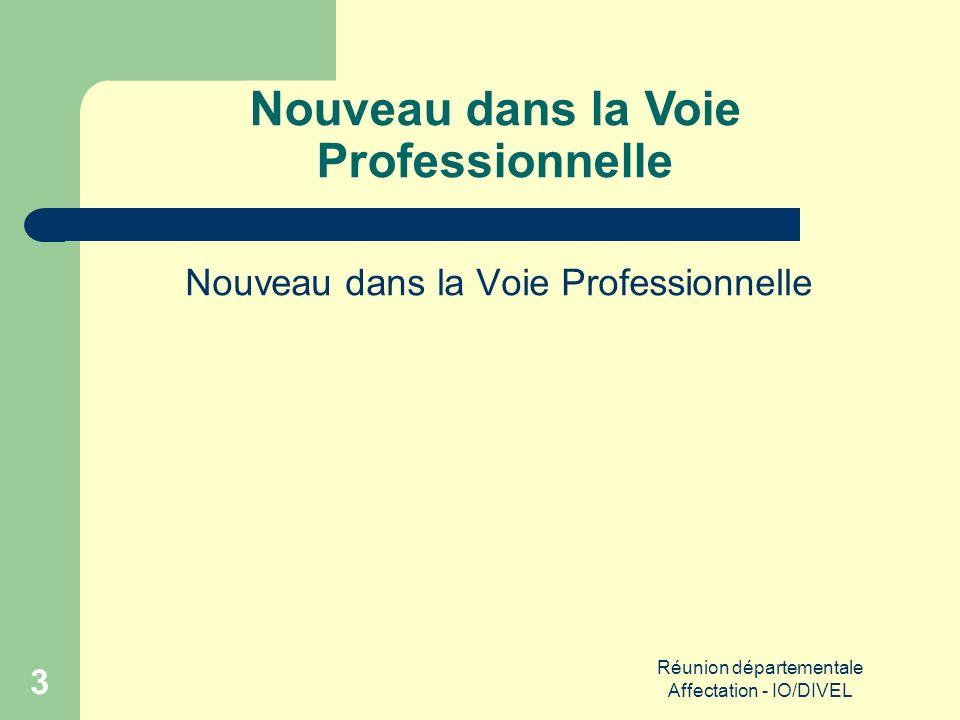 Réunion départementale Affectation - IO/DIVEL 3 Nouveau dans la Voie Professionnelle