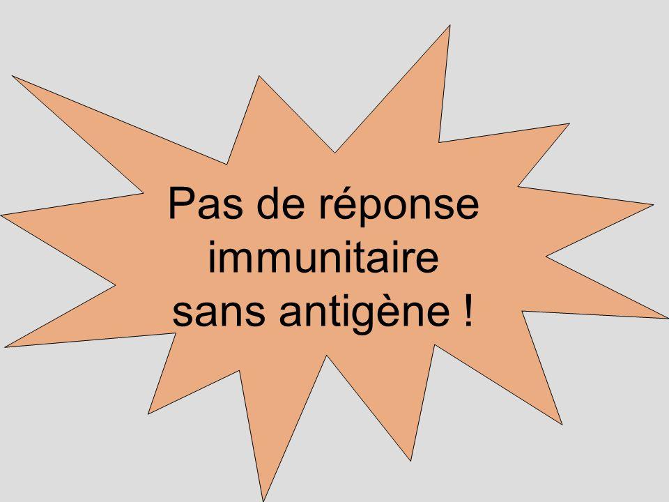 Pas de réponse immunitaire sans antigène !