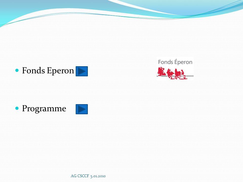ACTIONS ETRANGER Développer les réseaux de commercialisation Organisation de tournées de prospection Envoi de VIE Caractérisation de la demande étrangère Accueil de la clientèle étrangère Information complète et intègre sur les commandes AG CSCCF 5.01.2010