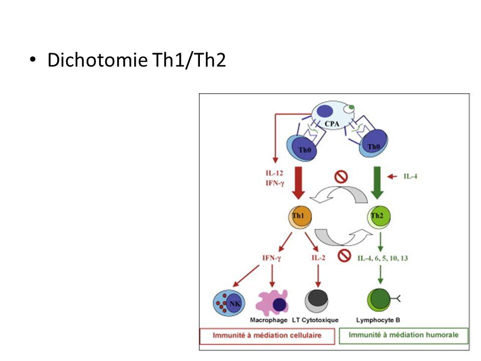 Apoptose cellulaire – Remodelage des tissus – Autorise linvasion du trophoblaste Dysfonction – RCIU – Préeclampsie – Accouchement prématuré