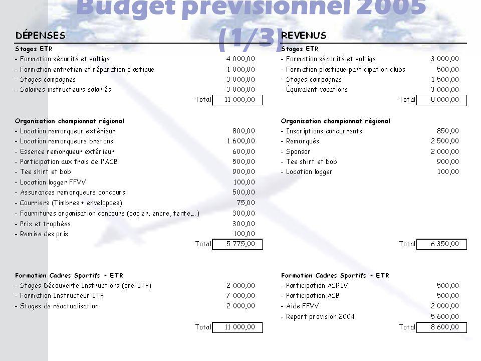 Budget prévisionnel 2005 (1/3)
