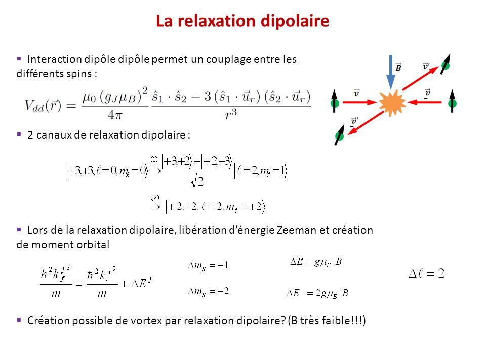 Procédure Le fit donne β Résultats typiques Temps (ms) Nombre datomes Sweep RF 2 BEC dans m S = -3 On image le BEC dans m S = -3 Sweep RF 1 BEC m S = +3, temps variable Champ magnétique B fixé Taux de collisions à deux corps Pour un BEC : Protocole expérimental (cas 3D)