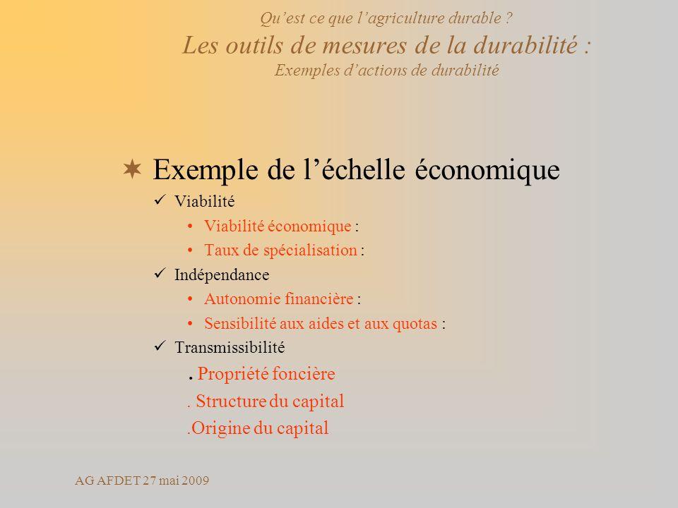 AG AFDET 27 mai 2009 Exemple de léchelle économique Viabilité Viabilité économique : Taux de spécialisation : Indépendance Autonomie financière : Sensibilité aux aides et aux quotas : Transmissibilité.