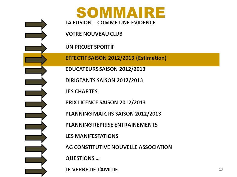 14 Dirigeants23 Vétérans44 Séniors79 Féminines14 U1911 U1716 U1529 U1320 U1142 U923 U77 Arbitres7 TOTAL315 Effectif Saison 2012/2013 (Estimation)