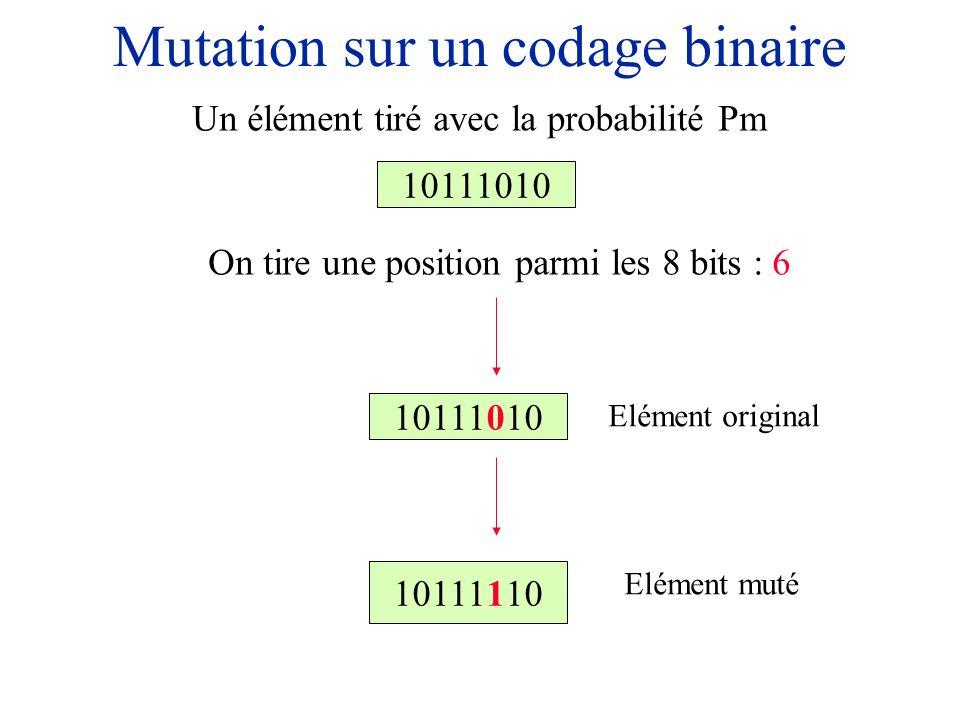 Mutation sur un codage binaire 10111010 On tire une position parmi les 8 bits : 6 Un élément tiré avec la probabilité Pm 10111010 10111110 Elément ori