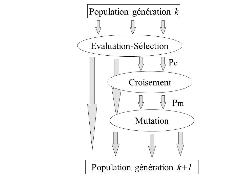 Evaluation-Sélection Population génération k Croisement PcPc PmPm Mutation Population génération k+1