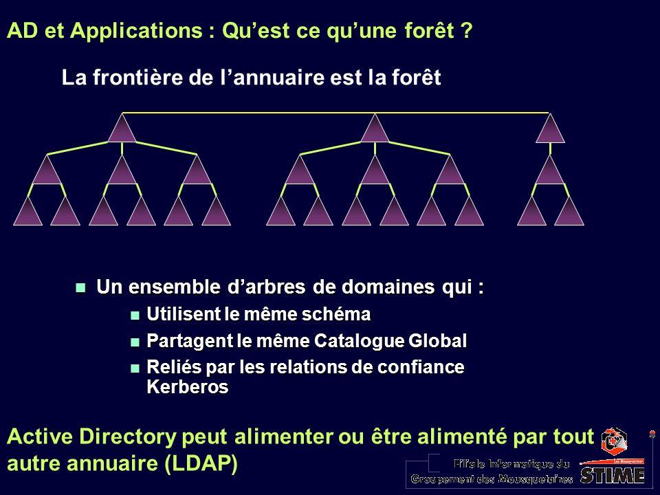 La frontière de lannuaire est la forêt Un ensemble darbres de domaines qui : Un ensemble darbres de domaines qui : Utilisent le même schéma Utilisent