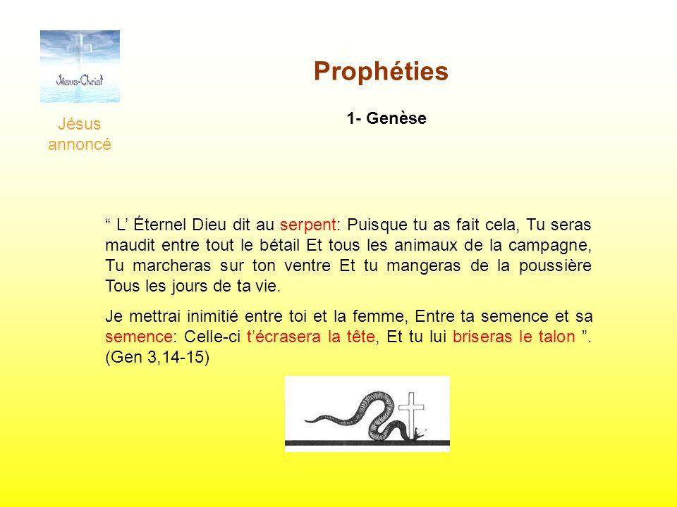 Jésus annoncé Prophéties 1- Genèse L Éternel Dieu dit au serpent: Puisque tu as fait cela, Tu seras maudit entre tout le bétail Et tous les animaux de