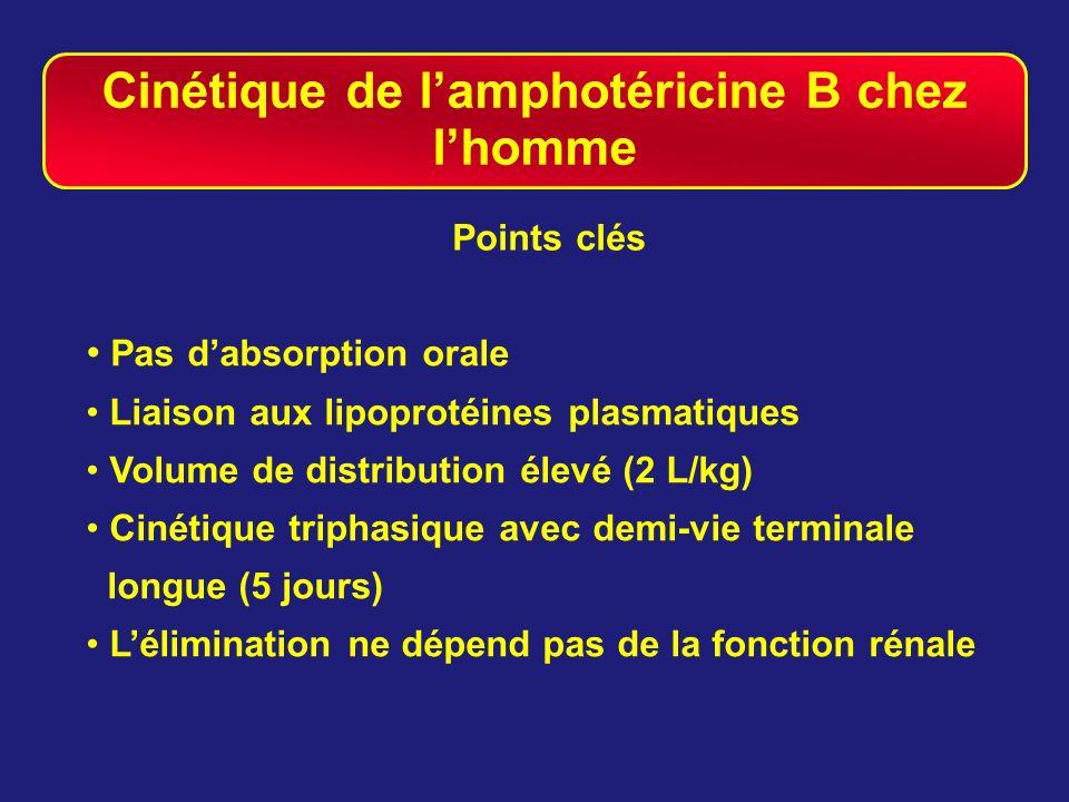 Cinétique de lamphotéricine B chez lhomme Points clés Pas dabsorption orale Liaison aux lipoprotéines plasmatiques Volume de distribution élevé (2 L/k