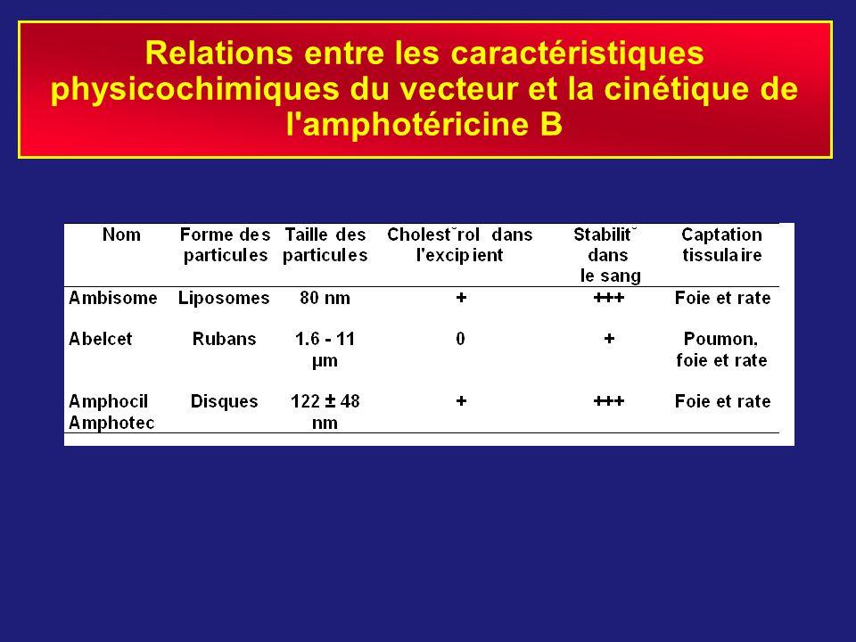 Relations entre les caractéristiques physicochimiques du vecteur et la cinétique de l'amphotéricine B
