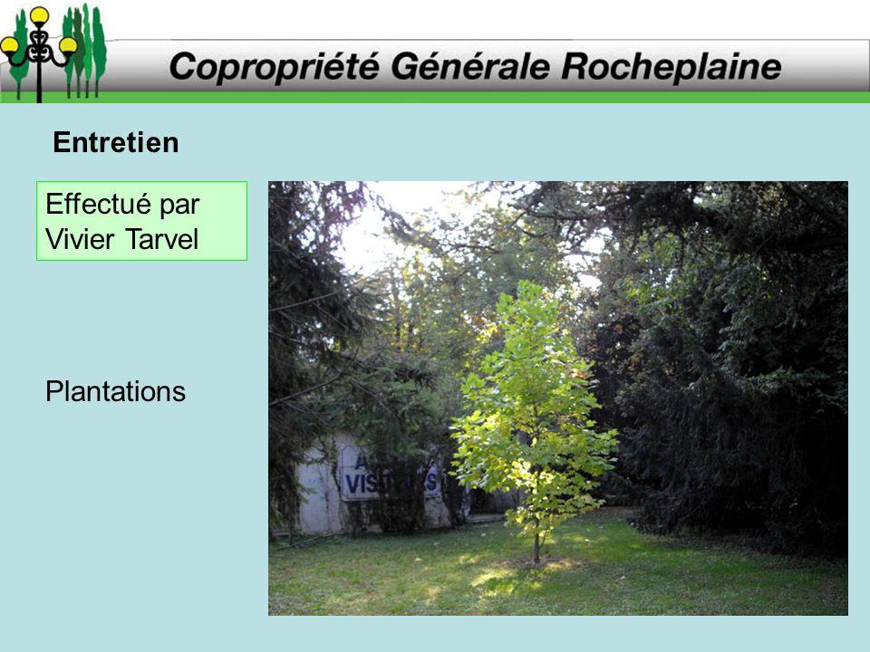 Entretien Plantations Effectué par Vivier Tarvel