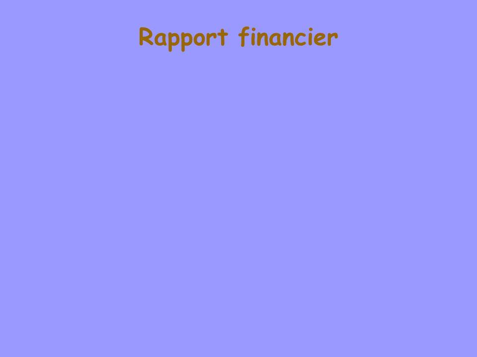 Rapport financier WillyLaurent