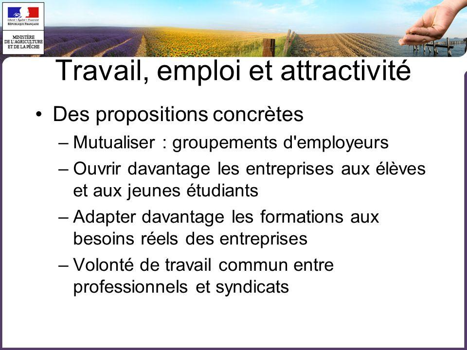 Travail, emploi et attractivité Des propositions concrètes –Mutualiser : groupements d'employeurs –Ouvrir davantage les entreprises aux élèves et aux
