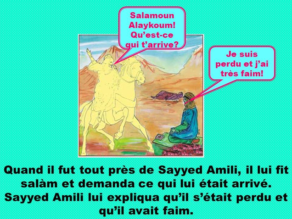 Quand il fut tout près de Sayyed Amili, il lui fit salàm et demanda ce qui lui était arrivé.