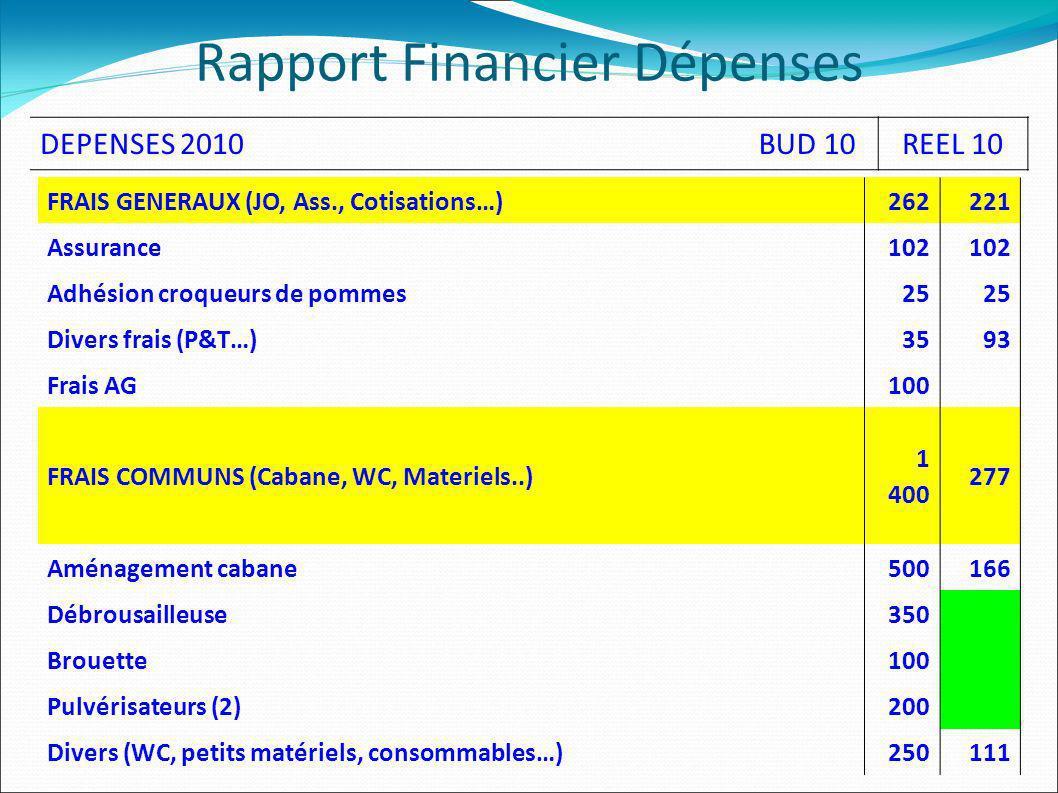 Rapport Financier Dépenses FRAIS GENERAUX (JO, Ass., Cotisations…)262221 Assurance102 Adhésion croqueurs de pommes25 Divers frais (P&T…)3593 Frais AG100 FRAIS COMMUNS (Cabane, WC, Materiels..) 1 400 277 Aménagement cabane500166 Débrousailleuse350 Brouette100 Pulvérisateurs (2)200 Divers (WC, petits matériels, consommables…)250111 DEPENSES 2010BUD 10REEL 10