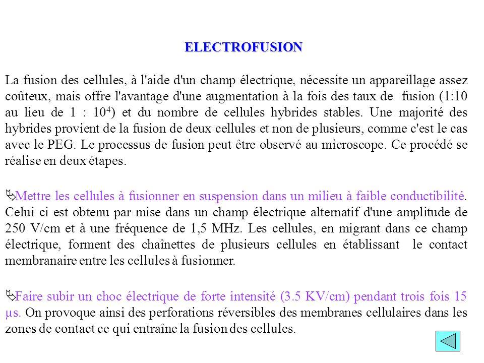 La fusion des cellules, à l'aide d'un champ électrique, nécessite un appareillage assez coûteux, mais offre l'avantage d'une augmentation à la fois de
