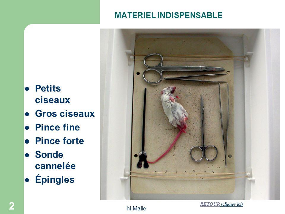 N.Malle 2 Petits ciseaux Gros ciseaux Pince fine Pince forte Sonde cannelée Épingles MATERIEL INDISPENSABLE RETOURRETOUR (cliquer ici)