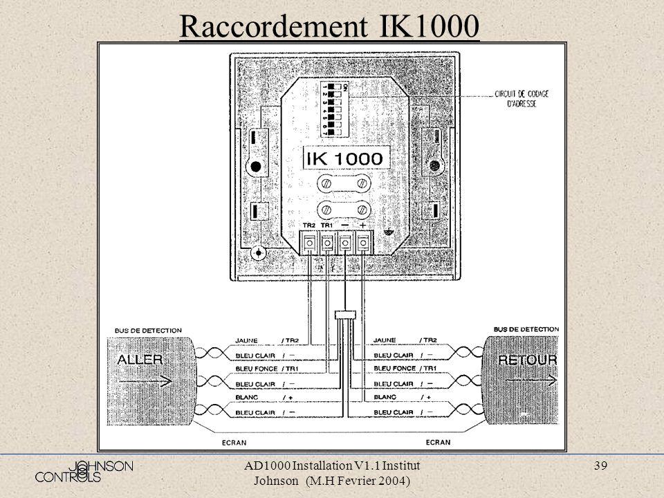 AD1000 Installation V1.1 Institut Johnson (M.H Fevrier 2004) 38 Raccordement socle S2-1000