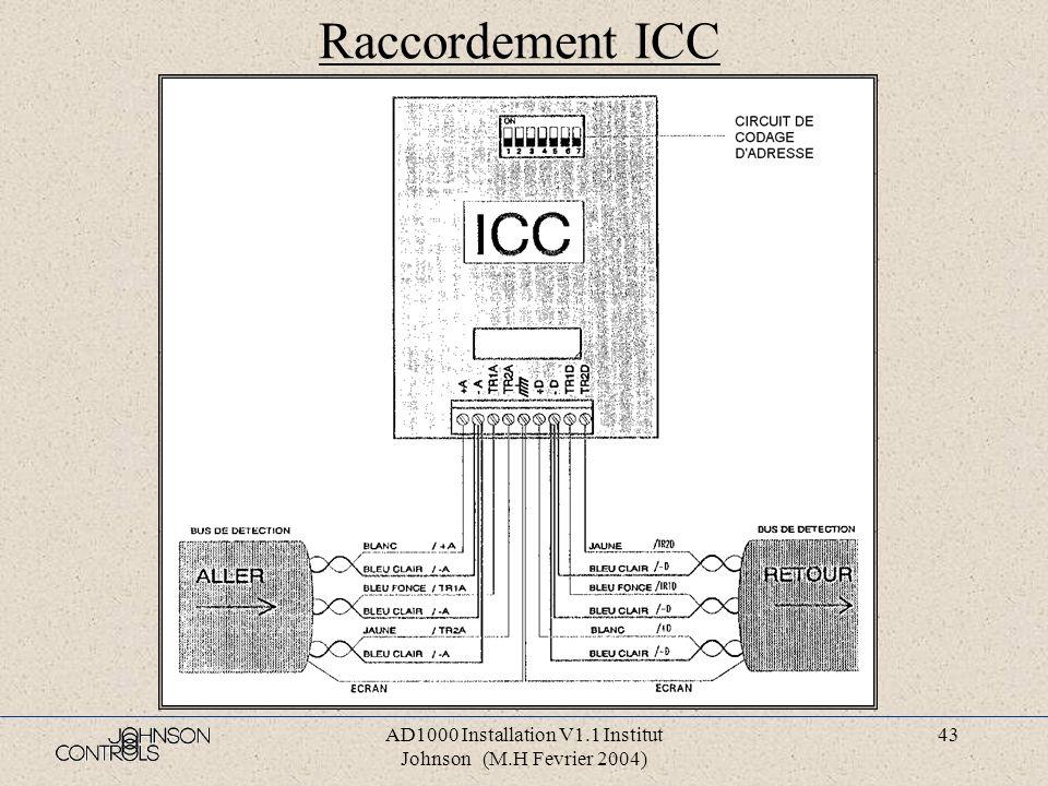 AD1000 Installation V1.1 Institut Johnson (M.H Fevrier 2004) 42 Raccordement socle D. M. sur ICF