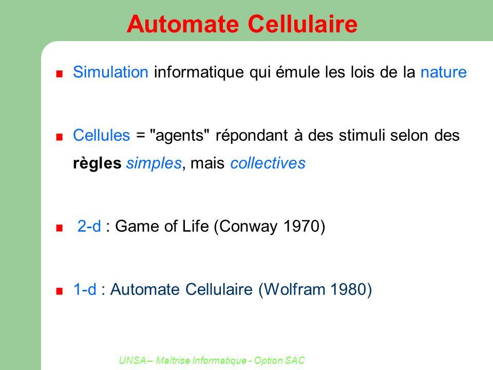 UNSA – Maîtrise Informatique - Option SAC Automate Cellulaire Simulation informatique qui émule les lois de la nature Cellules =