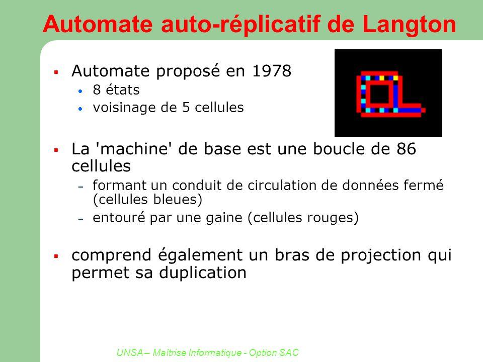 UNSA – Maîtrise Informatique - Option SAC Automate auto-réplicatif de Langton Automate proposé en 1978 8 états voisinage de 5 cellules La 'machine' de