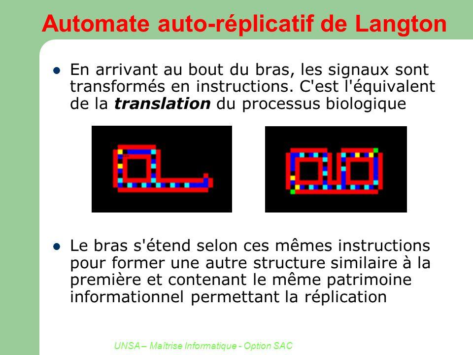 UNSA – Maîtrise Informatique - Option SAC Automate auto-réplicatif de Langton En arrivant au bout du bras, les signaux sont transformés en instruction
