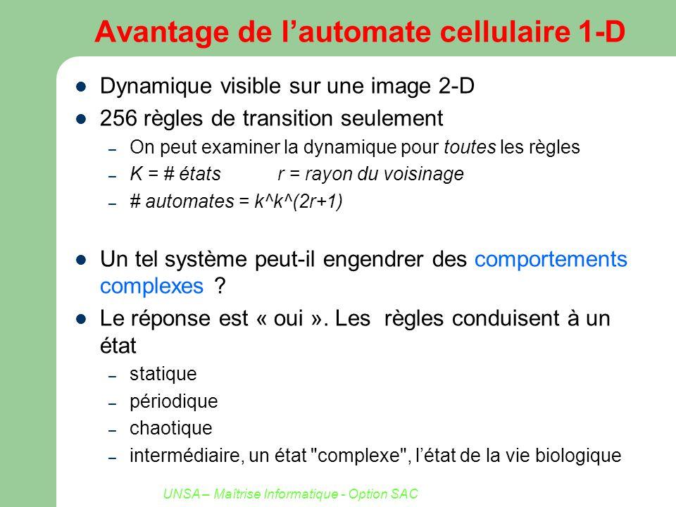 UNSA – Maîtrise Informatique - Option SAC Avantage de lautomate cellulaire 1-D Dynamique visible sur une image 2-D 256 règles de transition seulement