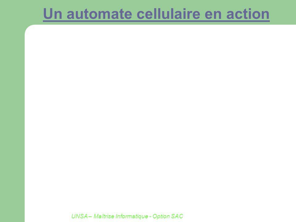 UNSA – Maîtrise Informatique - Option SAC Un automate cellulaire en action