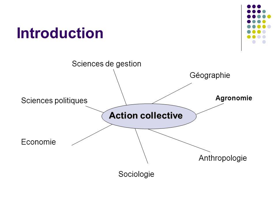 Les différentes formes de lAC Pour Friedberg (1997) : « il n y a pas d action collective un tant soit peu durable qui ne produise un minimum d organisation et qui ne génère à terme un noyau organisationnel plus ou moins formalisé .