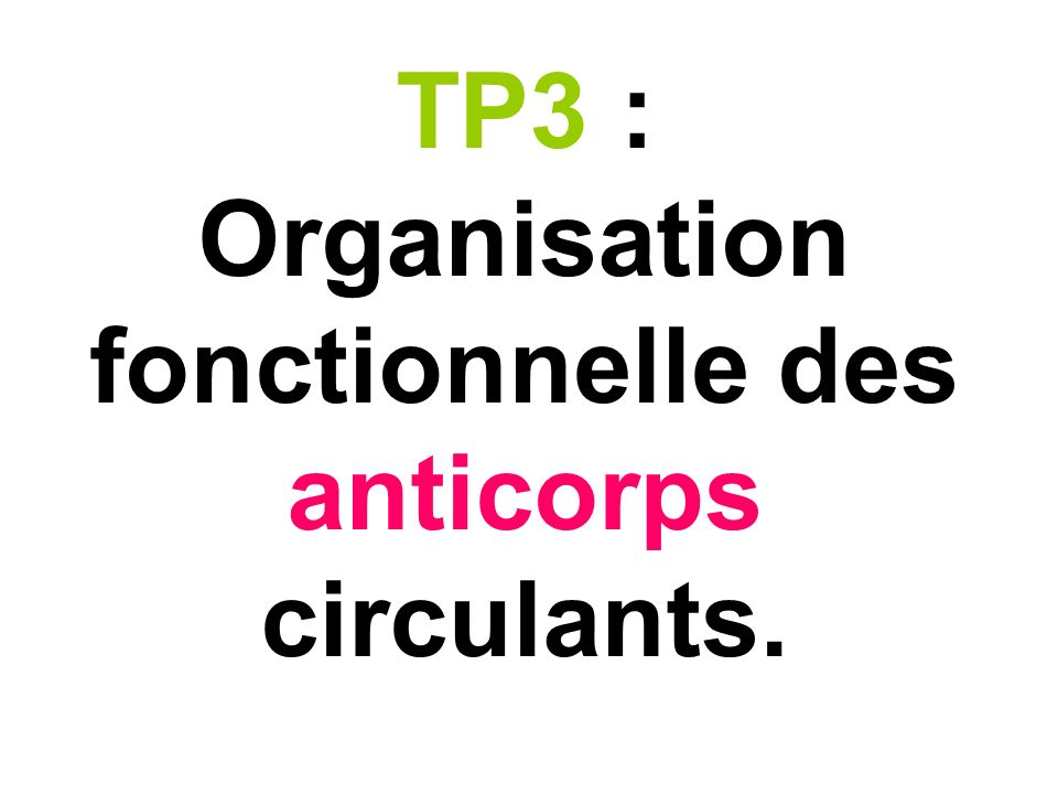 TP3 : Organisation fonctionnelle des anticorps circulants.