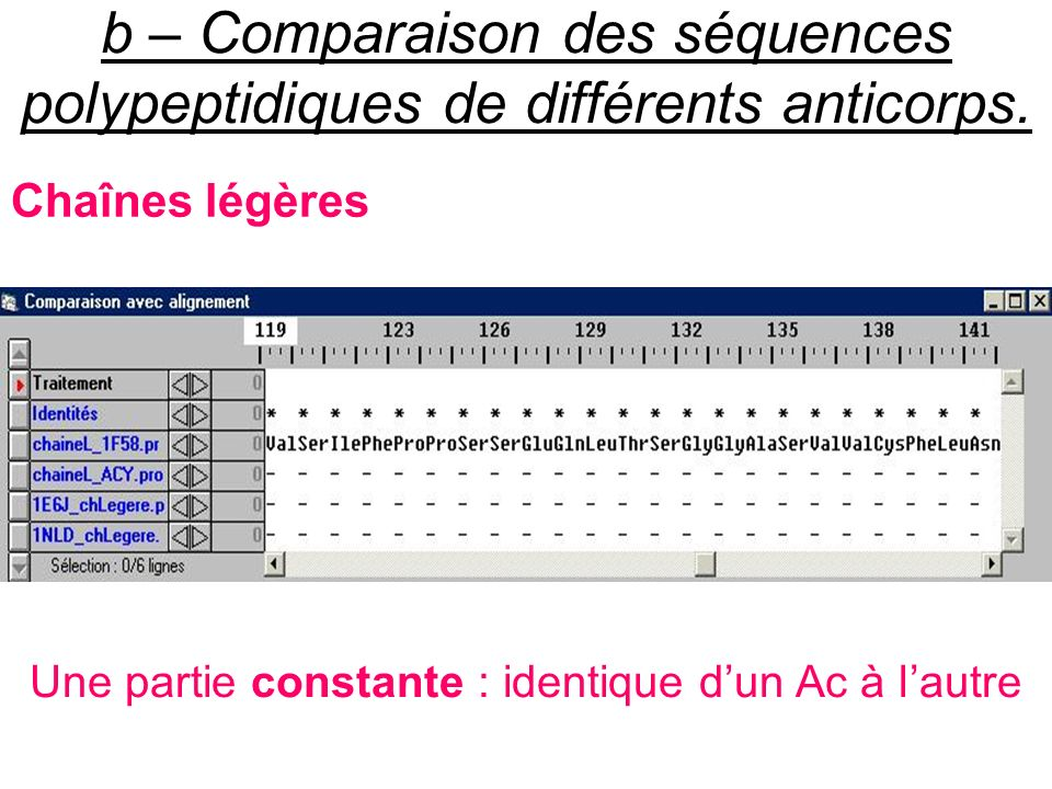 b – Comparaison des séquences polypeptidiques de différents anticorps. Chaînes légères Une partie constante : identique dun Ac à lautre
