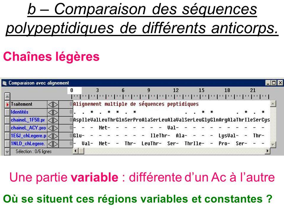 b – Comparaison des séquences polypeptidiques de différents anticorps. Chaînes légères Une partie variable : différente dun Ac à lautre Où se situent